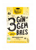 3 Gingembres Spicy Infuso Bio | Ramon Nature