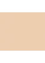 01 Compact Foundation REFILL | Purobio